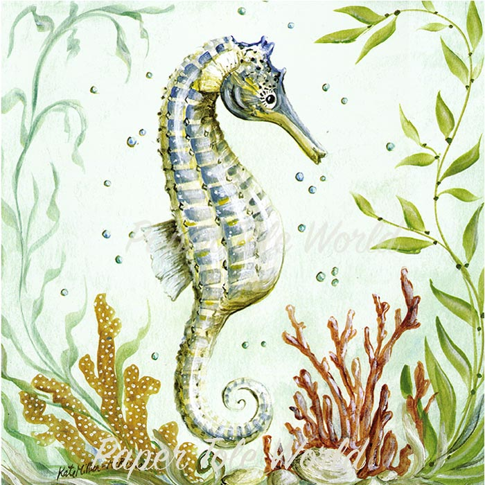 Fish pacific seahorse for Is a seahorse a fish